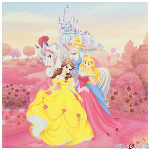 Mural picture Art Print stretched on wooden frame Disney Pricess horse pink