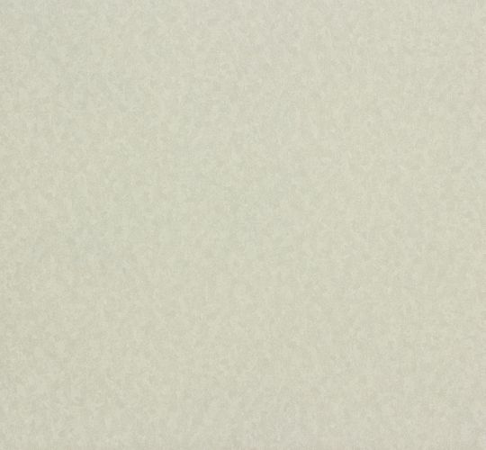 Erismann Eterna non-woven wallpaper 5797-37 579737 plain light grey