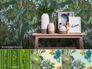 Kombinationsmöglichkeiten Tapete AS Creation Decora Natur 6 Dschungel grün blau 95898-1 958981 8