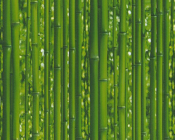 Vinyl Wallpaper Bamboo Plants Nature green 95936-1
