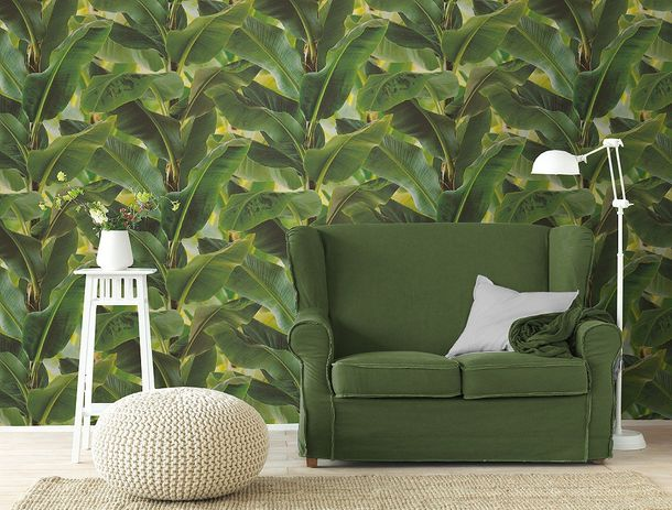 non-woven wallpaper green leaves optics structure Rasch African Queen 2 473407 online kaufen