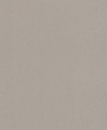 Non-woven Wallpaper brown plain Struktur Rasch Home Vision 4 Spring Time wallpaper 433722