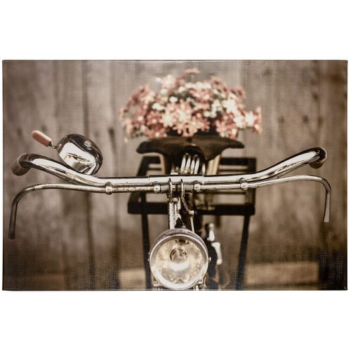 Picture stretcher art print Bild 60x90 cm bicycle sepia vintage brown rose