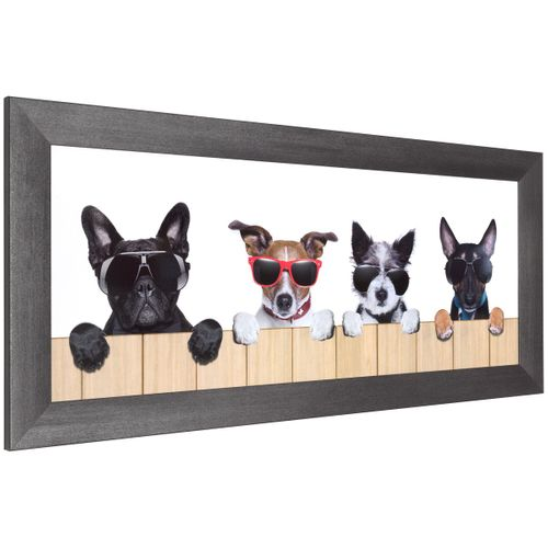 Set 3 pictures framed art print dogs cool white beige black  online kaufen