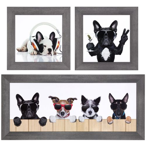 Set 3 pictures framed art print dogs cool white beige black