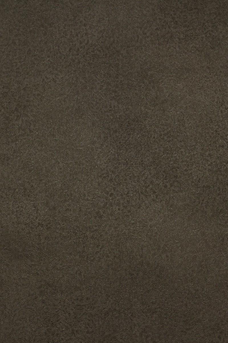 Wallpaper Ter Langer Structure Dark Grey Brown 55949 001