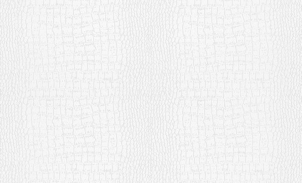 Wallpaper paintable crocodile look white Pigment 9506-11 online kaufen