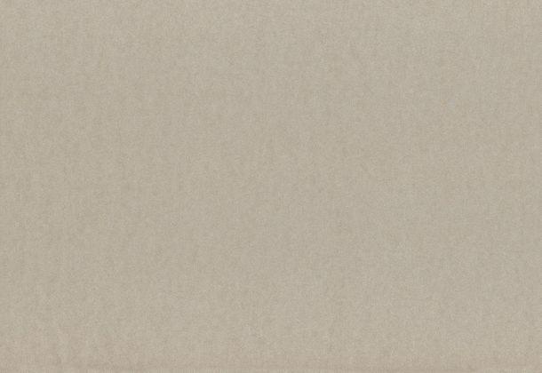 Wallpaper beige uni Rasch Textil 222189