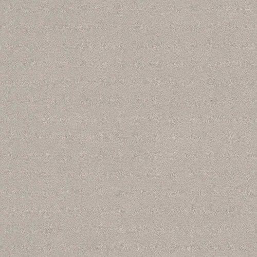 Vliestapete Rasch Putz-Optik taupe 479409 online kaufen