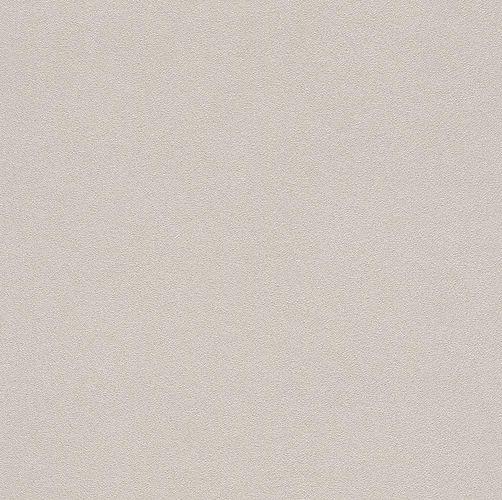 Non-woven wallpaper Rasch concrete stone beige 479430 online kaufen