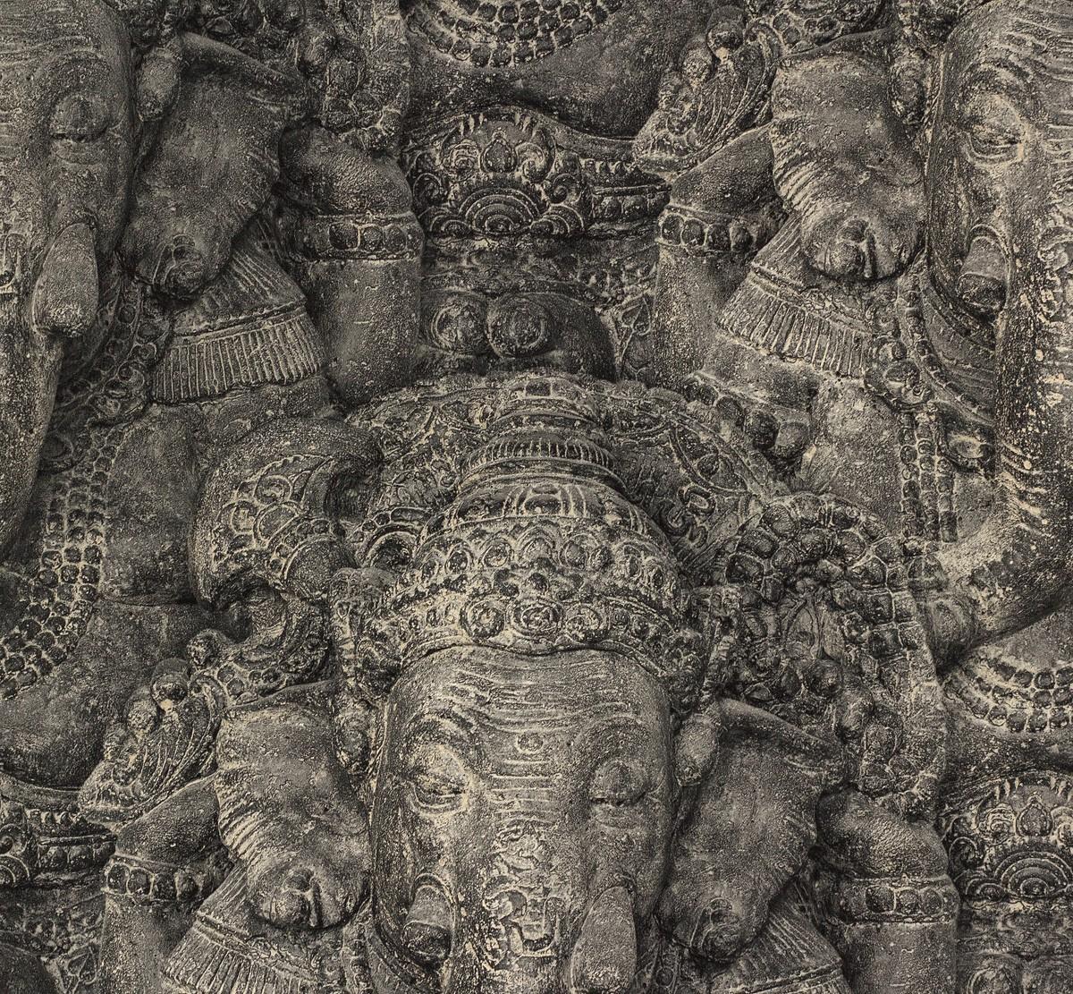 Tapete Rasch Crispy Paper Hindu Elefant Schwarz