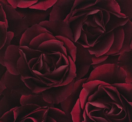 Wallpaper Rasch Crispy Paper Rose red 525625