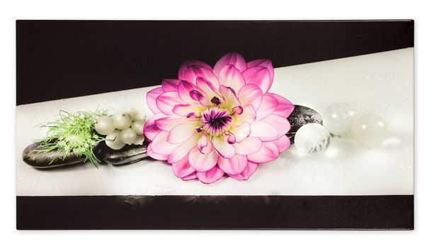 Picture Canvas flower black purple 50x100cm