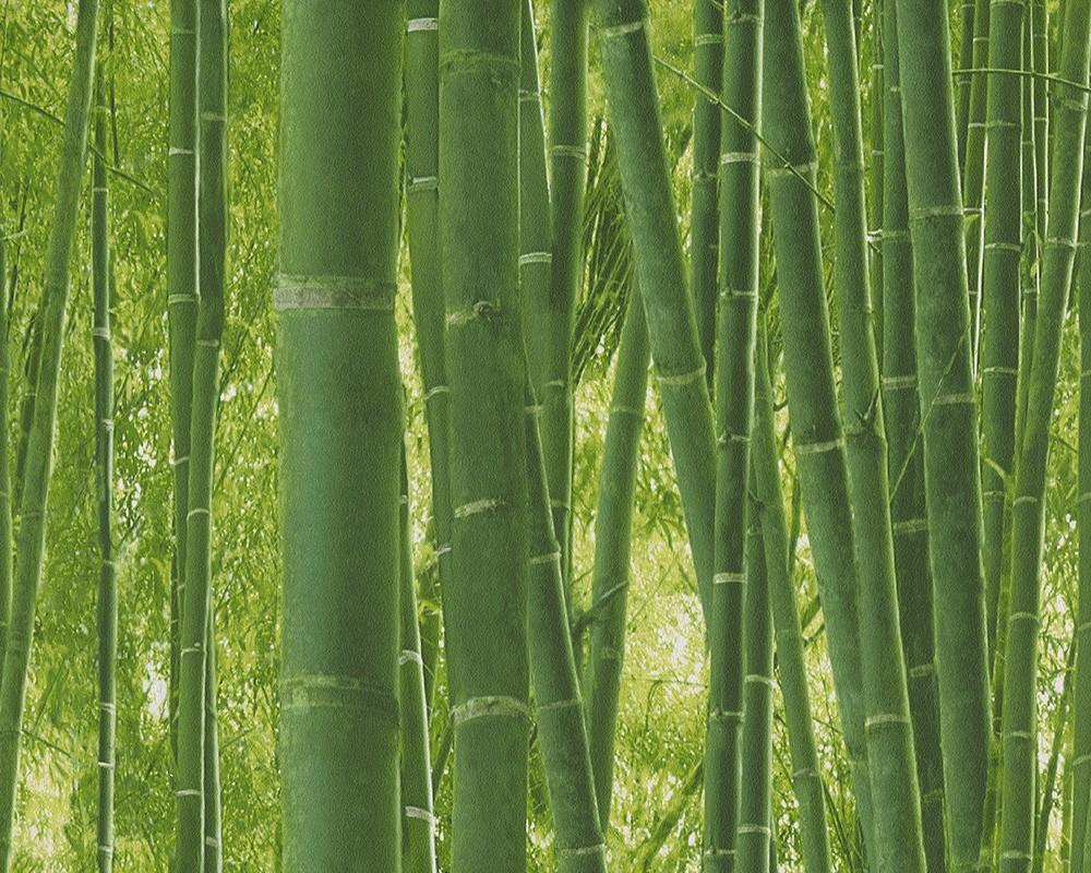 Tapete Bambuswald Floral Natur Grun