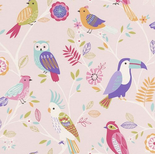 Kids Wallpaper Owl Bird Parrot rose colourful 293012 online kaufen