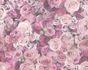 Wallpaper roses flower gloss purple AS Creation 32722-4 001