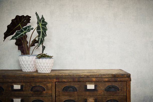 Wallpaper plain grey silver AS Creation 32881-3 online kaufen