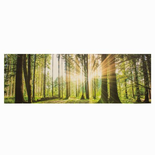 Picture Canvas Mural Forest Tree Nature 50x150cm online kaufen