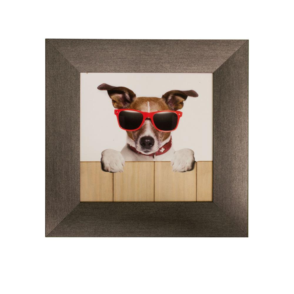 wandbild 3er set bilder hunde cool sonnenbrille 23x23cm. Black Bedroom Furniture Sets. Home Design Ideas