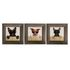 Set of 3 Framed Pictures Dogs Cool Sunglasses 23x23cm 001