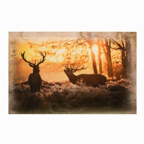 Wandbild Keilrahmen Bild Hirsch Wald Sonne 78x118cm online kaufen
