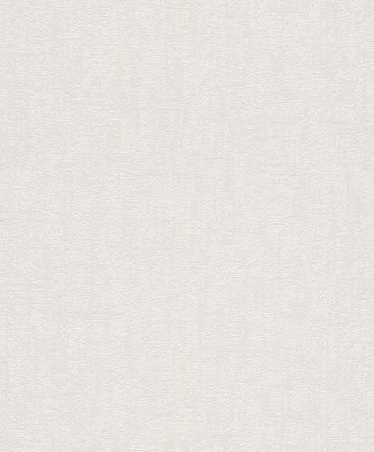 Wallpaper Rasch plaster style vintage white grey 899016