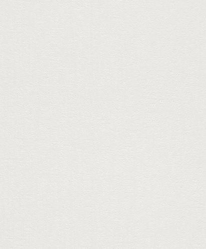 Wallpaper Rasch plaster style vintage grey white 899023
