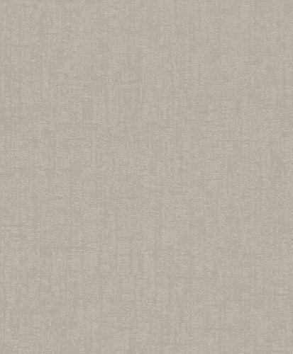Wallpaper Rasch plaster style vintage grey 899047