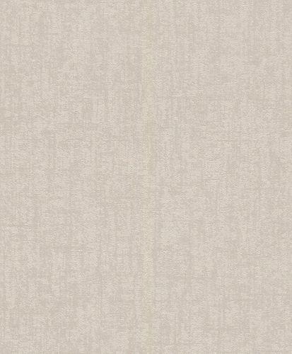 Wallpaper Rasch plaster style vintage grey 899085
