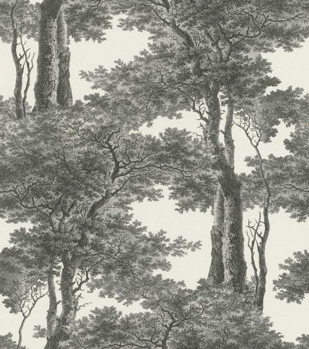 Wallpaper Rasch Passepartout forest white anthracite 605419 online kaufen