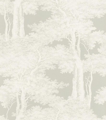 Wallpaper Rasch Passepartout forest trees light grey 605433 online kaufen
