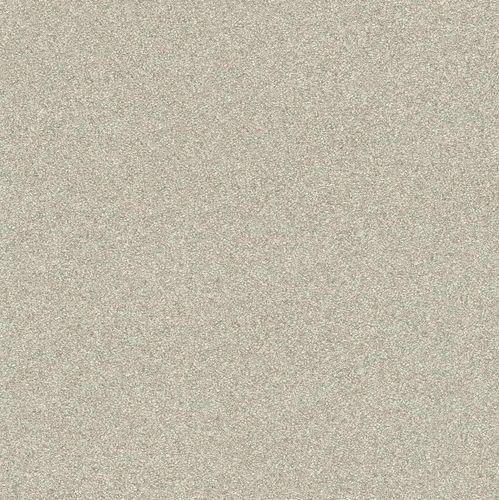 Vliestapete Rasch Passepartout Granulat beigegrau 606645 online kaufen