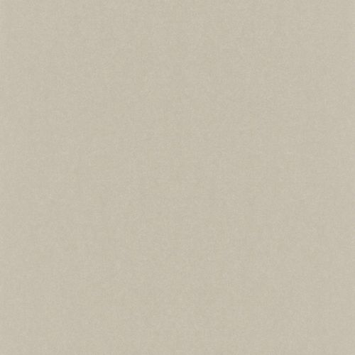 Wallpaper Rasch Emilia plain silver beige Metallic 501155
