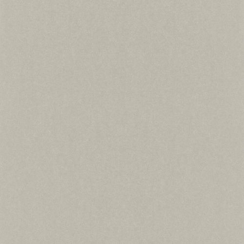Wallpaper Rasch Emilia plain taupe Metallic 501179