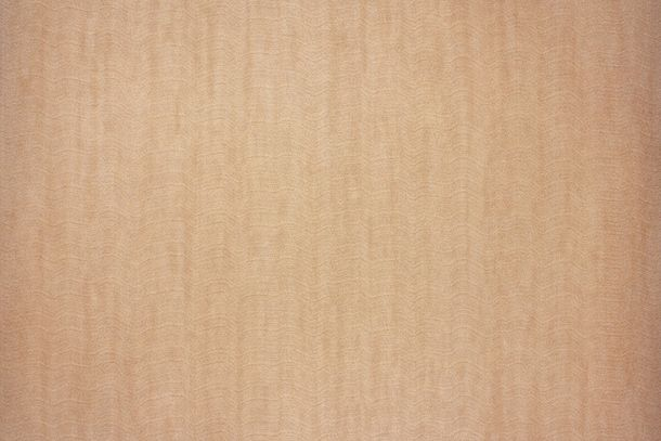 Vliestapete Fuggerhaus Uni Marmorierung kupfer 4781-57 online kaufen