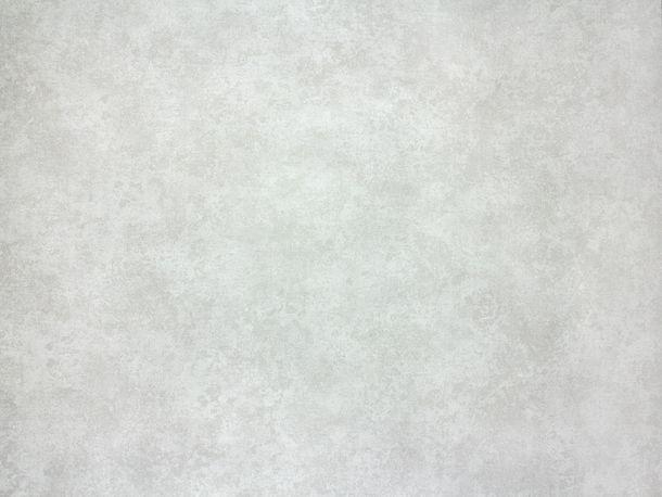 Wallpaper Fuggerhaus used texture silver grey 4784-47