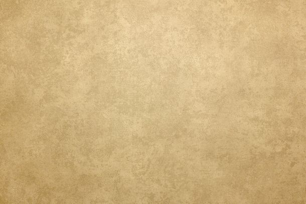 Wallpaper Fuggerhaus used texture gold brown 4784-54 online kaufen