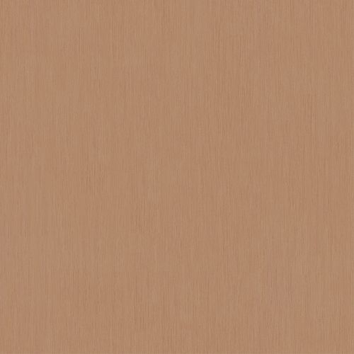 Wallpaper Dieter Langer strié textured beige brown 58815