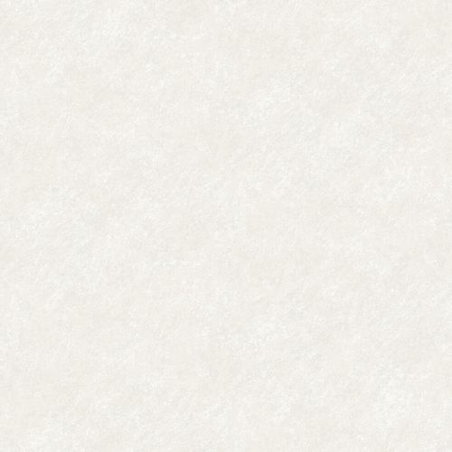 Wallpaper Rasch Textil mottled design light grey white 021028 online kaufen