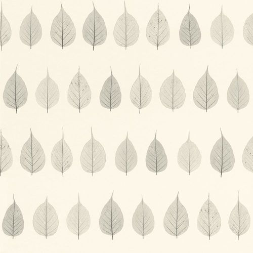 Wallpaper World Wide Walls leafs nature white grey 128846