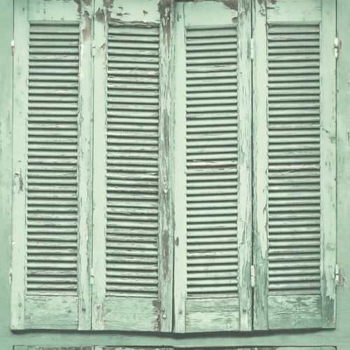 Wallpaper World Wide Walls window shutter grey green 138883 online kaufen