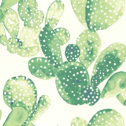 Wallpaper World Wide Walls cactus white green 138902 online kaufen