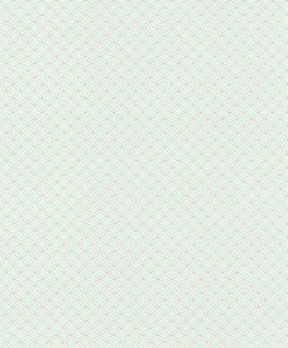 Vliestapete Rasch Kreise Grafik hellblau silber Glanz 701722 online kaufen