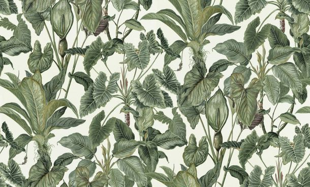Wallpaper jungle motif white green Erismann 6303-07 online kaufen