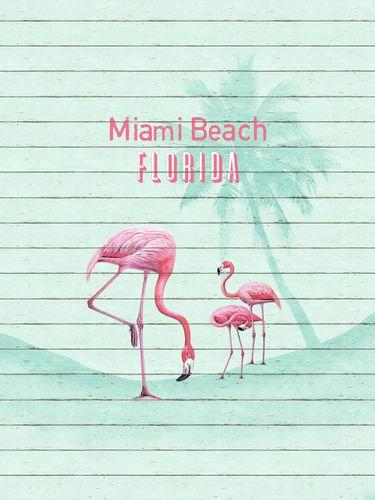 Vlies Fototapete Miami Beach Florida Flamingo 225x300cm online kaufen