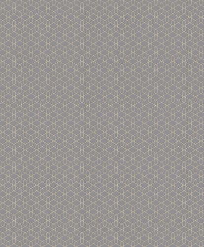 Wallpaper Rasch Cato 3D graphic grey glitter 800906 online kaufen