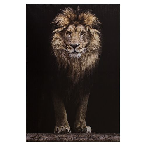 Canvas Picture Mural lion safari Africa 78x118 cm online kaufen