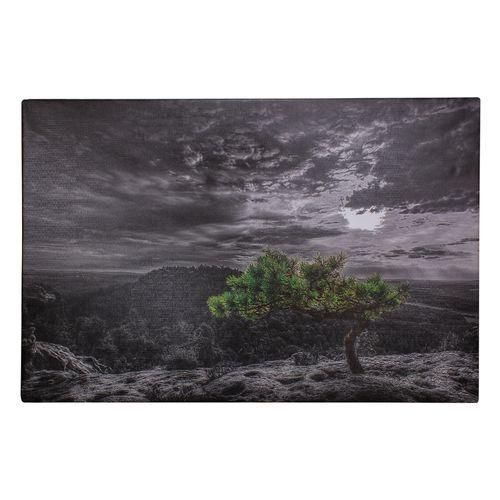 Canvas Picture Mural landscape nature 78x118 cm online kaufen