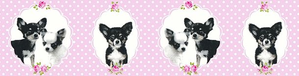 Kids Wallpaper Border Chihuahua dogs rose black 35850-2 online kaufen