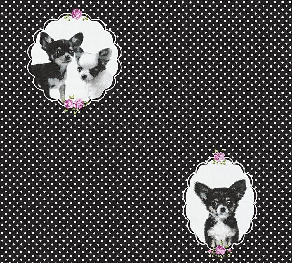 kindertapete chihuahua hund schwarz wei 35851 2. Black Bedroom Furniture Sets. Home Design Ideas